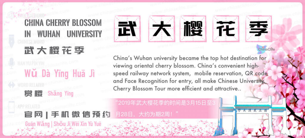 Say Wuhan University's Cherry Blossom in Chinese, Wuhan University Cherry Blossom, China Cherry Blossom Tour, Chinese Cherry Blossom, Wu Da Ying Hua ji, Wuhan University's Oriental Cherry Blossom