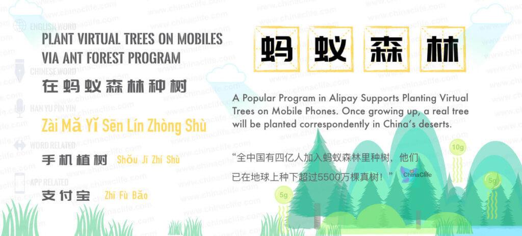 Ma Yi Sen Lin, Free Chinese Word Card Study