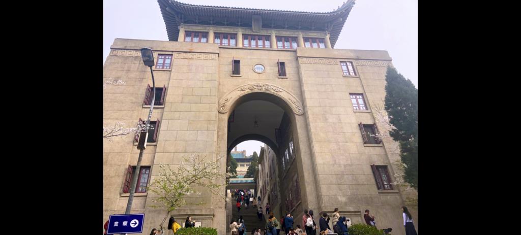 Wuhan University Cherry Blossom, China Cherry Blossom Tour, Chinese Cherry Blossom, Wu Da Ying Hua ji, Wuhan University's Oriental Cherry Blossom