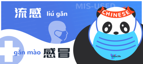 Learn Chinese Words Liugan and Ganmao