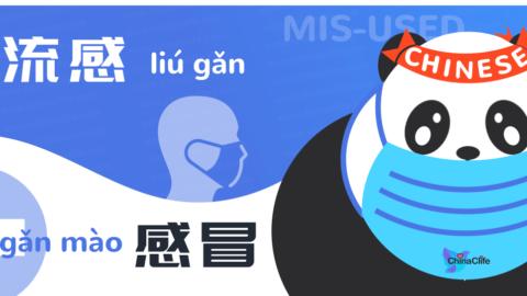 Learn Chinese Words Liugan and Ganmao