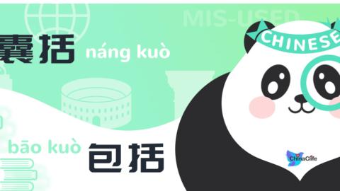 Misused Chinese Verbs 囊括 vs 包括
