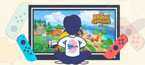 Full Mystery Islands Types in Animal Crossing New Horizons 2020