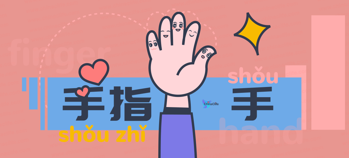Remember Names of Hands Knuckles Fingers in Chinese Language with Ease