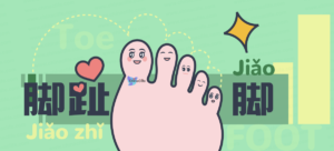 Fast memorize Chinese names of toes and feet parts with Latest Bilingual Stories online. 5 Mins Daily Boost Chinese Skills Simply.