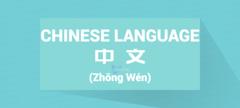 Chinese Word for Chinese Language