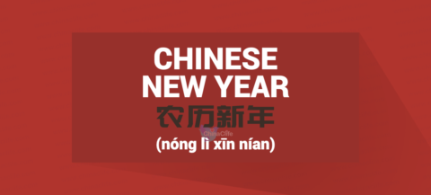 Correct Chinese word for Chinese New Year